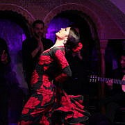 Шоу Фламенко в Tablao Flamenco Cordobes