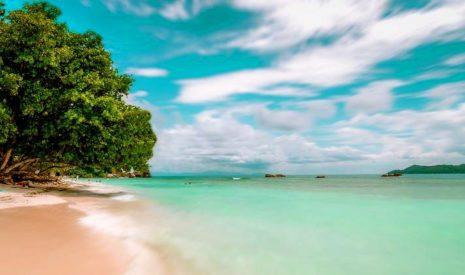 Сейшельские острова откроют границы для туристов без вакцинации и карантина