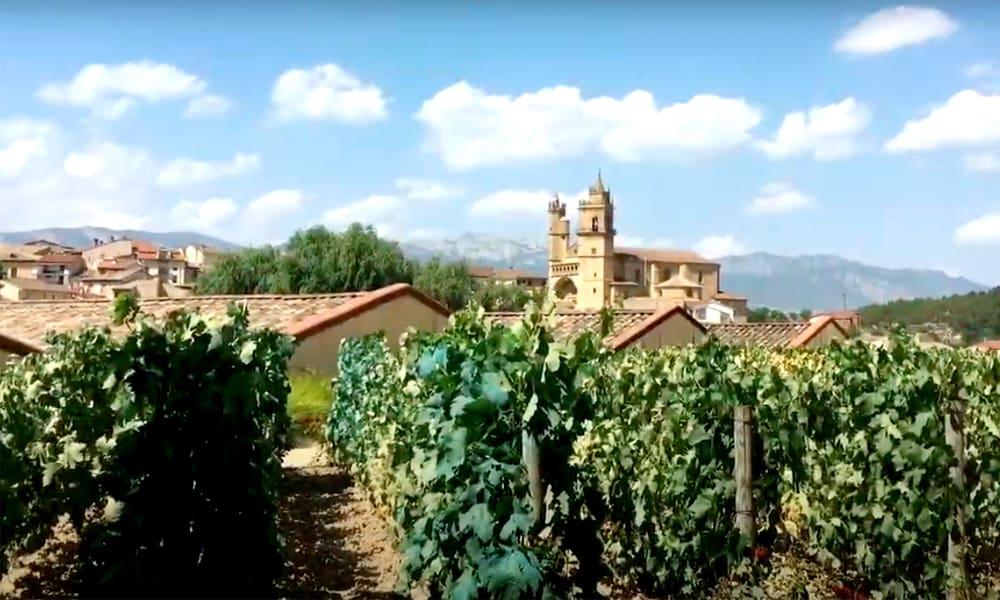 Две испанские винодельни попали в мировой топ-10