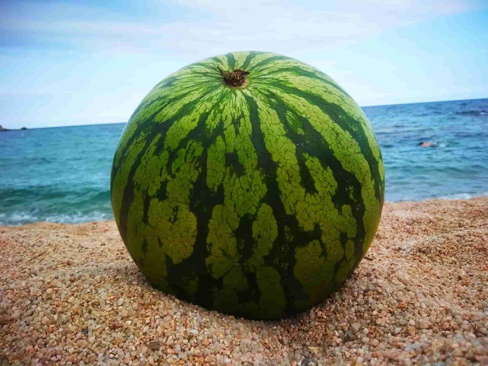 Средиземноморская диета: новые полезные свойства
